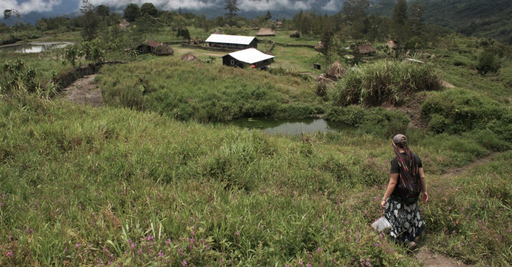 Rachel in Papua, walking down a hill towards a small hamlet, surrounded by long grass.